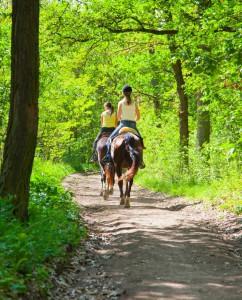paseo-a-caballo-700x865